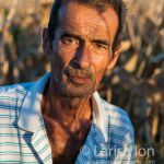Farmer in field at corn harvest closeup at sunset.